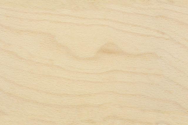 Diagnosis de la madera abedul sanite - Madera de abedul ...