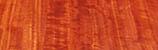 eucalipto rojo19