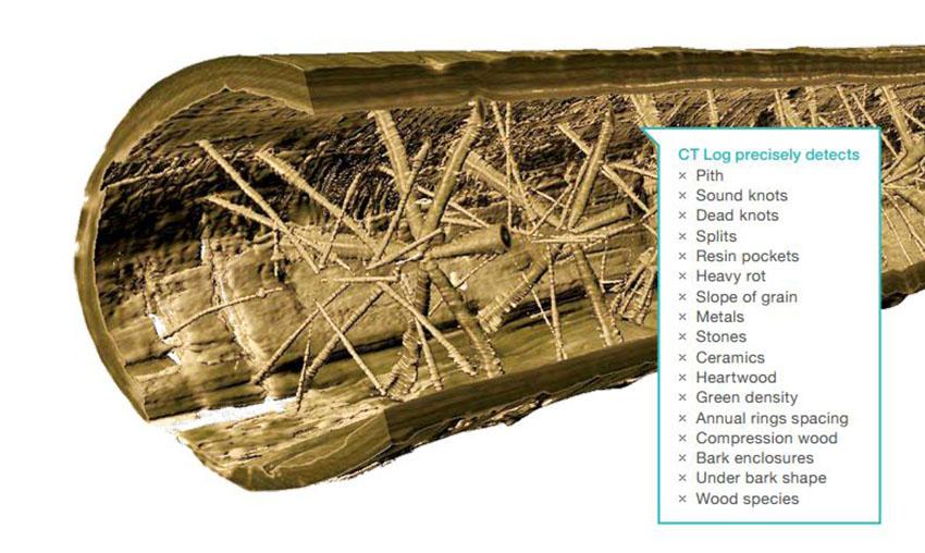 diagnosis madera rayos x