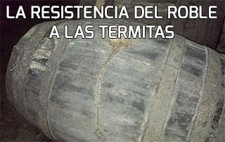 La resistencia del Roble a las Termitas
